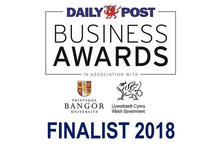 Daily Post Business Awards Finalist logo